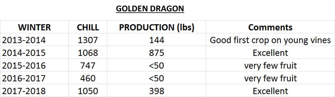 golden dragon data
